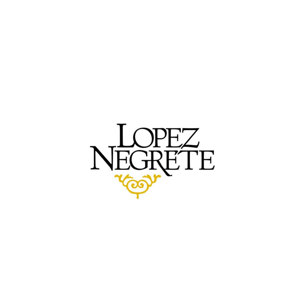Housto Corporate Event Bands Lopez Negrete